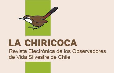 Revista La Chiricoca