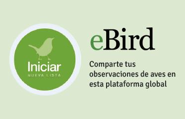 Utiliza e Bird