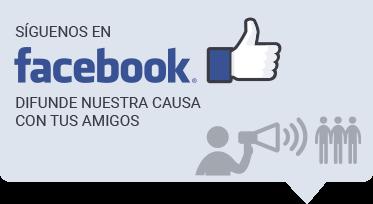 Facebook de la ROC