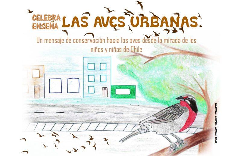 celebra-las-aves-urbanas-portada