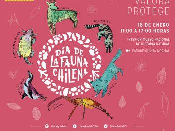 La ROC en la sexta edición del Día de la Fauna Chilena